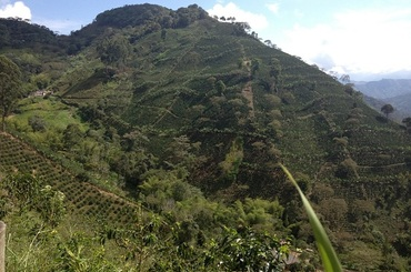 BIO - Granja la Esperanza - Valle del Cauca, Colombie