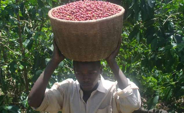 2014 09 17 cafe du rwanda 1