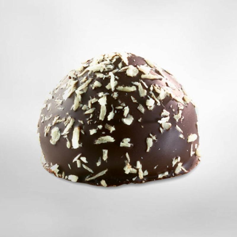 BIO - Kokosrotsjes - Belgische chocolade Belvas (100gr) 2