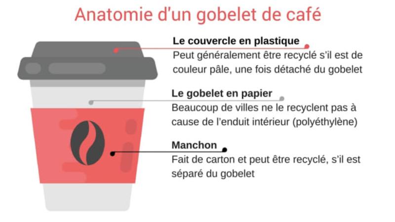 Anatomie gobelet café