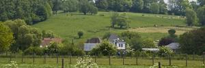 Cohesievorming in Vlaamse Ardennen