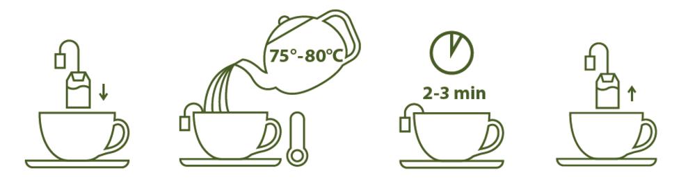 Dégustation thé vert