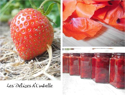 Produits naturels à base de plantes